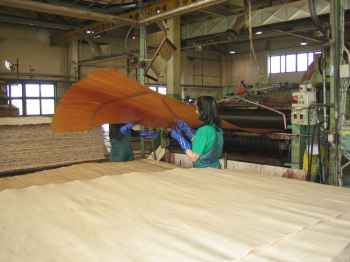 Plywood manufacture at Company UPM-Kymmene